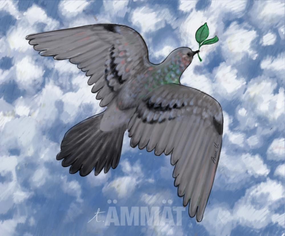Kansainvälistä rauhanpäivää, pulut